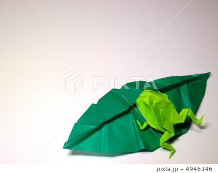 クリスマス 折り紙 カエル 折り紙 : pixta.jp
