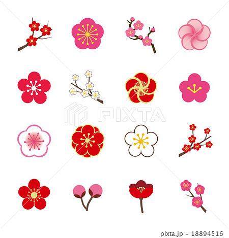 梅 花 植物 2月のイラスト素材 Pixta