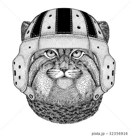 動物 絵 マヌルネコ 野生のイラスト素材 Pixta