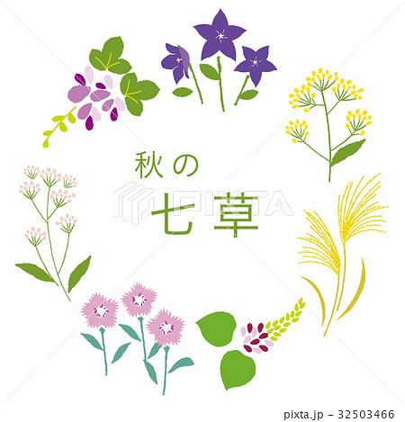 秋の花のベクター素材集 Pixtaピクスタ